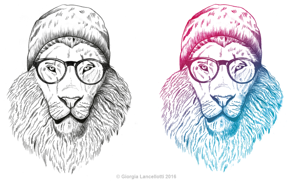 Gallery_960x600 Hipster Lion Drawing